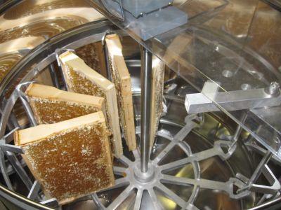 Langsam füllt sich die Honigschleuder mit den Honigwaben