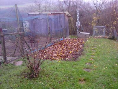 ...hier darf das Laub bis im Frühjahr verrotten !
