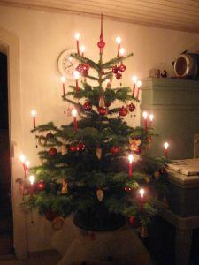 Weihnachtsbaum in Baldingen