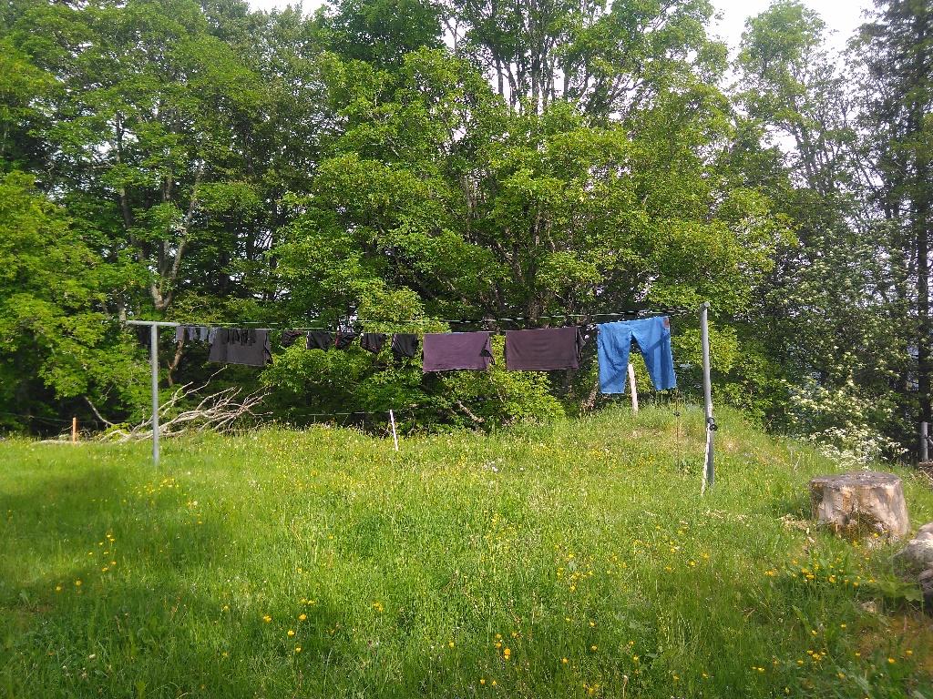 Erste Wäsche mit 'neuer' Waschmaschine hängt um kurz nach 9 Uhr draussen an der Leine
