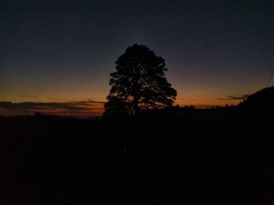 Sonnenaufgang am 04.08.2019 um 05:26 Uhr im 'oberen Graffenrieder'
