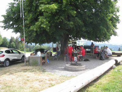 Die Spatzen sitzen bei diesem Wetter lieber unter dem Baum
