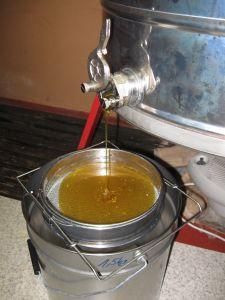 Der 2. Honig fliesst aus der Schleuder durch das Doppelsieb in den Kessel