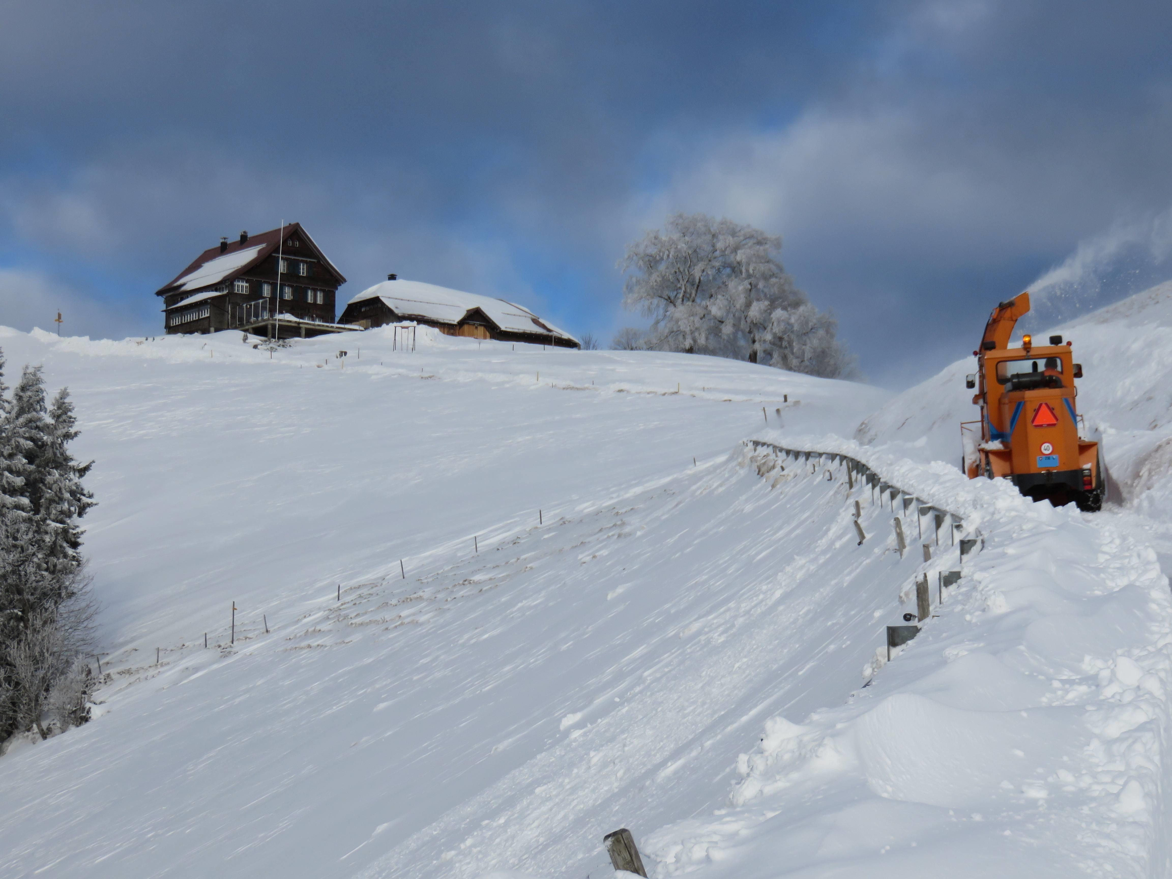 Weg hinauf zum Restaurant auf der Alp Scheidegg am 15.12.2017