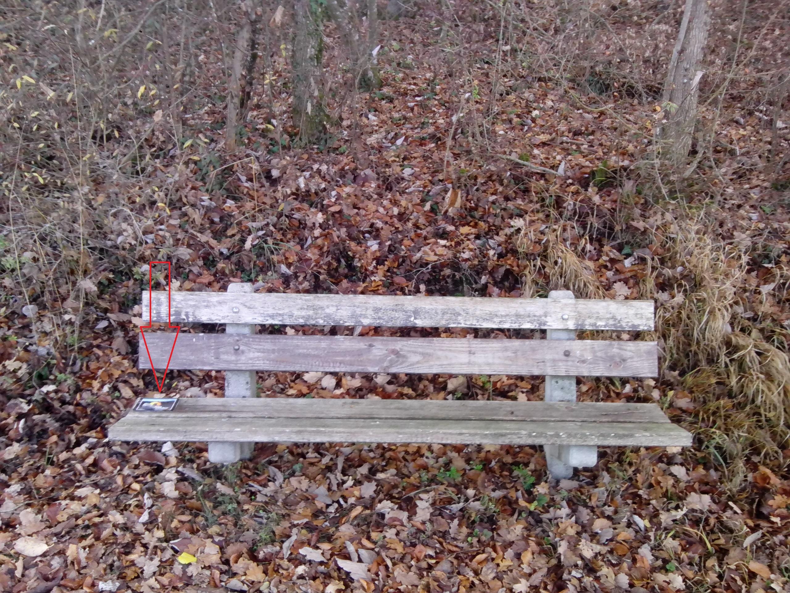 'Vergessenes' auf einem Bänkli beim heutigen Spaziergang