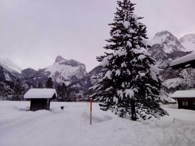 Anständig Schnee in Kandersteg am 30. Januar 2015