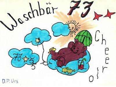 Waschbär 73
